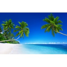 Tropical Beach Paradise 5K Wallpapers - Photography for Download