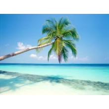 Tropical Island Wallpapers - Photography for Download