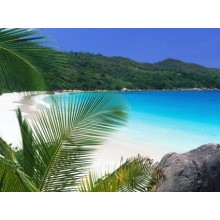 Tropical Retreat Beach Wallpapers - Photography for Download