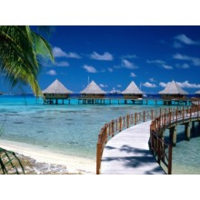 Walkway to Paradise Beach Wallpapers - Photography for Download
