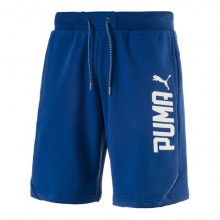 Sports Men`s Shorts Puma Style Tec 10