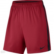 Sports Men`s Shorts Nike Flow Dry Football