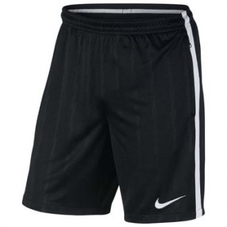 Sports Men`s Shorts Nike Squad Paramount 010