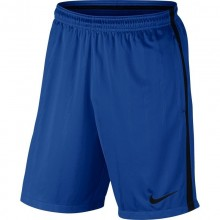 Sports Men`s Shorts Nike Squad Paramount 452