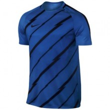 Sports Men`s T-Shirt Nike Dry Squad 453