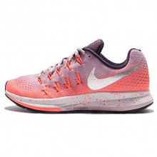 Sports Women`s Shoes Nike Pegasus 500