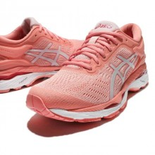 Sports Women`s Shoes Asics Gel-Kayano 24 1701