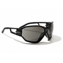 Sports glasses Alpina S-Fashion