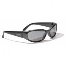 Sports glasses Alpina Zily