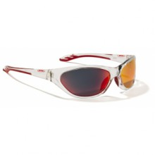 Sports glasses Alpina Seico